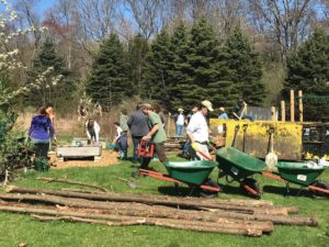 chj trumbull service day