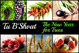 Tu B'Shvat Celebration @ Fellowship Hall Southport Congregational Church  | Fairfield | Connecticut | United States